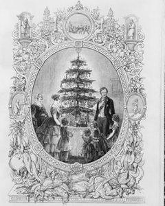 hith-christmas-tree-victoria