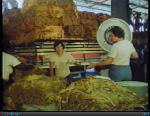 BATCo - A Video Profile (1986)